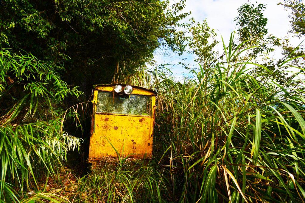 台灣山岳雜誌-登木瓜山途中的機關車是知名地標